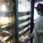 Dampak Wabah Corona, Stok Darah PMI Kabupaten Blitar Tinggal untuk Dua Hari