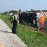 Bus Rombongan SD Terguling di Tol Gempol – Pasuruan, 7 Penumpang Luka