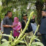 Sengketa Hukum, Proyek Alun-alun Kota Probolinggo Terancam Batal Dilanjutkan Tahun 2020