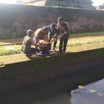 Candi Jawi Pasuruan, DitaburiBibit Ikan