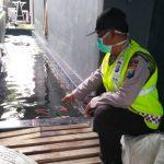 Balita 2 Tahun Tewas Tenggelam di Kolam Ikan Koi Samping Rumah