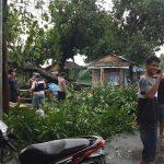 Disapu angin, Puluhan Rumah di Tiga dusun di Mojokerto Rusak