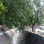 Box Culvert Belakang RSUD Jombang Ditunda, Dana Dialihkan untuk Tangani Covid-19