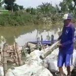 Cegah Banjir, Perbaikan Tanggul Jebol di Turi Lamongan Dikebut