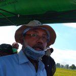 Pandemi Corona, Produksi Beras di Jombang Surplus