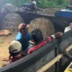 Gerebek Judi Sabung Ayam di Mojokerto, Polisi Amankan 15 Ayam dan Puluhan Sepeda Motor