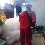 DBD Mewabah di Tengah Covid-19, 75 Orang di Situbondo Terjangkit Demam Berdarah