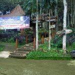 Imbas Covid-19, Puluhan Pekerja Wisata Hutan Pinus Gogoniti Blitar 'Nganggur'