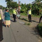 Memboncengkan Bocah, Ibu Rumah Tangga di Situbondo Tewas Tabrakan