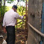 Bobol Kandang, Dua Sapi milik Warga Sumberasih Probolinggo Hilang Dimaling