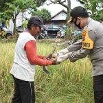 TNI-Polri di Trenggalek Bagikan Ratusan Nasi Bungkus untuk Buka Puasa