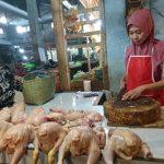 Jelang Lebaran, Harga Daging Ayam di Jember Melonjak