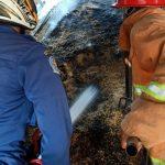 Diduga Korsleting, Gudang Penyimpanan Padi di Blitar Terbakar