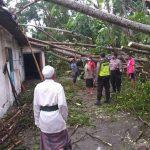 Dihantam Hujan dan Angin, Empat Rumah di Udanawu Blitar Rusak Tertimpa Pohon