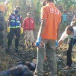 Pemuda Sidoarjo Ditemukan Tewas di Persawahan Mojokerto, Diduga Dibunuh