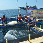 Dukung Kampung Nelayan Tangguh, Satpolair Polres Situbondo Budidaya Ikan Kerapu