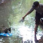 Diduga Gangguan Jiwa, Ibu Muda di Nganjuk Buang Bayinya ke Sungai