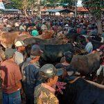 Pengunjung Pasar Hewan Wonoasih Kota Probolinggo Banyak Tak Pakai Masker