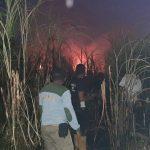 Tanaman Tebu 2 Hektare di Situbondo Ludes Terbakar, Kerugian Rp 30 Juta