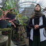 Peminat Tanaman Hias di Jember Meningkat, Kirim ke Luar Jatim Disertai Surat Karantina