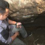 Penemuan Struktur Bata di Jember, Disparbud: Kesimpulan Awal Peninggalan Kerajaan Majapahit