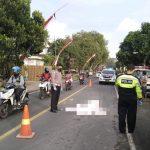 Kecelakaan Tunggal di Tulungagung, Pemotor Asal Blitar Tewas di Lokasi