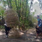 Gerebek Judi Sabung Ayam di Jombang, Polisi Temukan 6 Ekor Jago Tak Bertuan