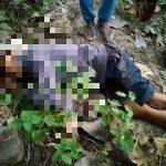 Diduga Hipertensi Kambuh, Warga di Blitar Meninggal Mendadak di Hutan