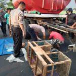 Senggolan dengan Motor Misterius, Pedagang Sayur Tewas Terlindas Truk Tangki di Jombang