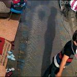 Pencuri Burung di Ngagel Surabaya Terekam CCTV