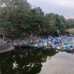 Agar Terlihat Asri, Bebatuan Sungai di Mojokerto Dicat Warna-warni Jelang Agustusan