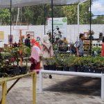 Jenuh di Rumah? Coba Kunjungi Kafe-Kebun Bunga di Pinggiran Kota Jember Ini