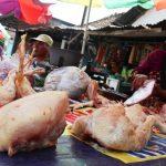 Harga Daging Ayam di Jombang Anjlok