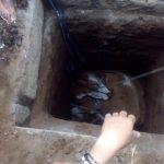 Tak Diketahui Musababnya, Sapi di Situbondo Ditemukan di Septic Tank Sedalam 3 Meter