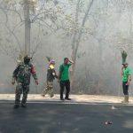 6 Hektare Hutan Jati di Taman Nasional Baluran Terbakar