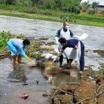 Mayat Pria Ber-KTP Bali Tertelungkup di Tepi Sungai Brantas Tulungagung