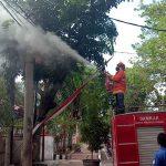 Kabel PLN di Kota Probolinggo Meledak dan Terbakar, Warga Sekitar Berhamburan