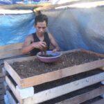 Langkah Mudah Beternak Cacing Tanah