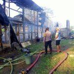 Kandang Ayam di Blitar Terbakar, Ribuan Anak Ayam Terpanggang