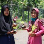 "Mahasiswa Jember Kembangkan Media Tanam dari Lumut ""KokedamaMU"""
