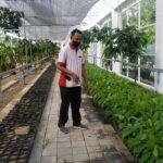 Kampung Coklat Blitar Tambah Wahana Edukasi Rumah Bibit