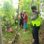 Pencari Biawak Temukan Mayat dalam Sumur Kawasan Kebun Sengon di Sidoarjo