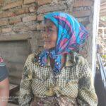 Sebatang Kara, Nenek Sainah Tinggal di Gubuk Pinggir Jalan Antirogo Jember