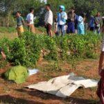 Kakek 77 Tahun di Sumenep Ditemukan Tewas Membusuk di Tegalan