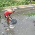 Cuaca Ekstrim, Petani Ikan Koi di Blitar Terancam Bangkrut