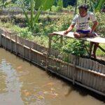 Pembudi Daya dan Penjual Memimpikan Pasar Ikan Hias di Kota Probolinggo