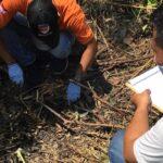 Kasus Mayat Bayi Terbakar di Jember, Polisi Periksa 9 Saksi
