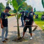 Protes Jalan Rusak, Warga Jember Tanam Puluhan Pohon Pisang di Jalan Berlubang