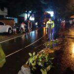 Hendak Menyeberang, Pemotor Wanita di Jombang Tewas Tertabrak Truk
