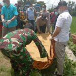 Jebakan Tikus Listrik di Ngawi Kembali Memakan Korban Jiwa